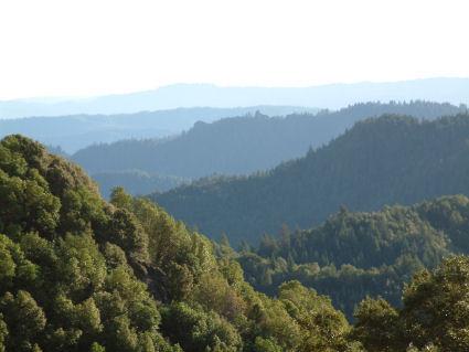 hills of mendocino